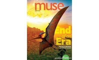 Muse 3月刊 2020年高清PDF电子杂志下载英文原版 28MB