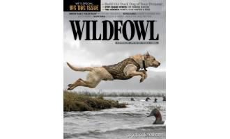 Wildfowl 4月刊 2020年高清PDF电子杂志下载英文原版 39MB