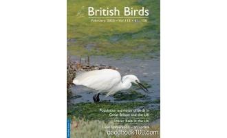 British Birds 2月刊 2020年高清PDF电子杂志下载英文原版 5MB